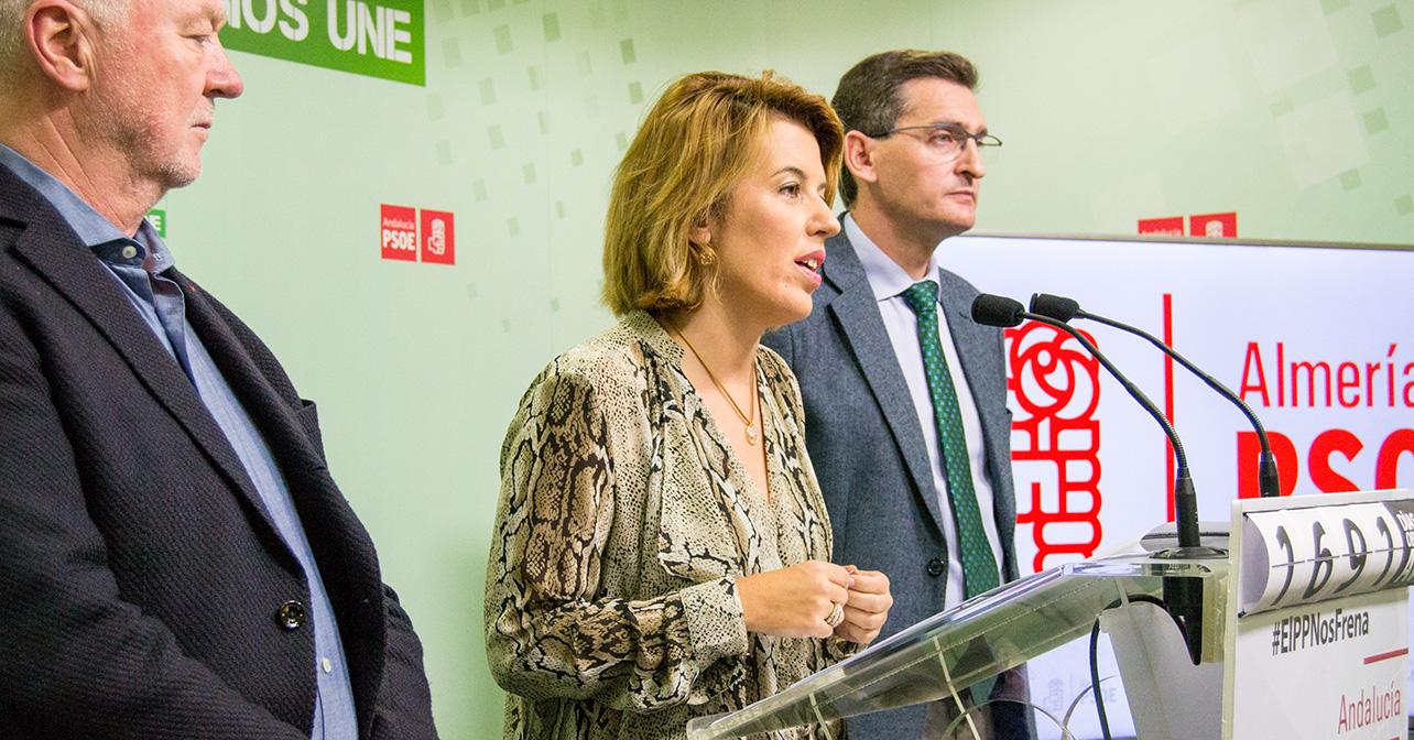 Rueda de prensa que ha ofrecido el PSOE de Almería sobre los Presupuestos Generales del Estado para 2017