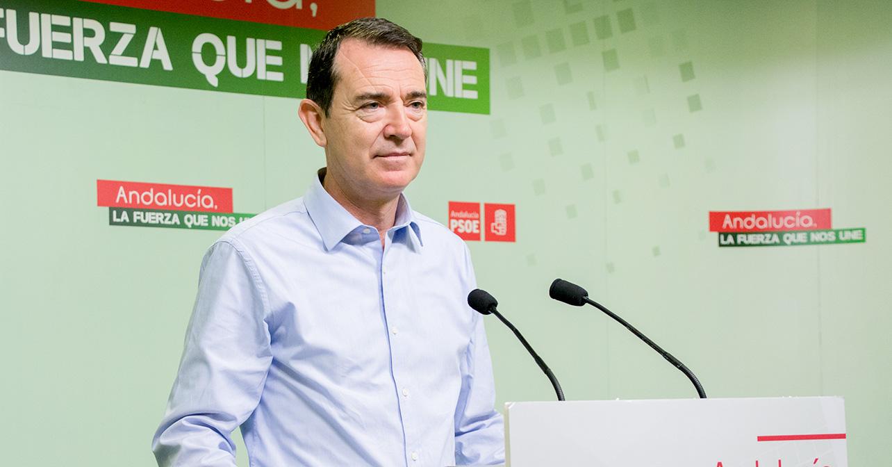 Juan Carlos Pérez Navas, Senador por el PSOE de Almería