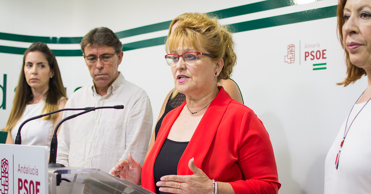 Rueda de prensa que ha ofrecido la secretaria de Política Municipal e Institucional del PSOE de Almería, Adela Segura