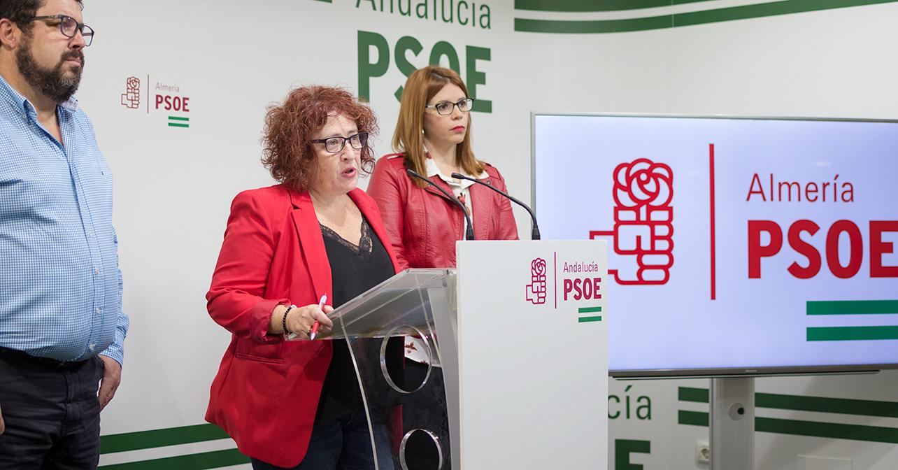 Rueda de prensa que ha ofrecido la secretaria de Políticas contra la Violencia hacia las Mujeres del PSOE de Almería, Aurelia Jiménez Godoy